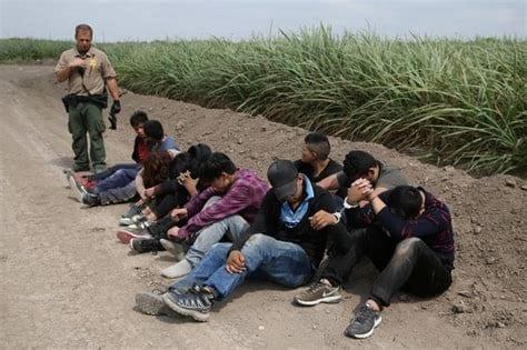 Illegal Immigrants 3